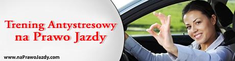 prawo jazdy stres - Trening Antystresowy
